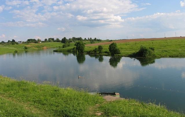 Рыбалка Алешкинский пруд