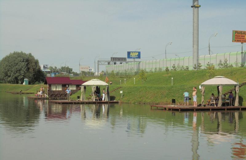 vidnaya-rib-2
