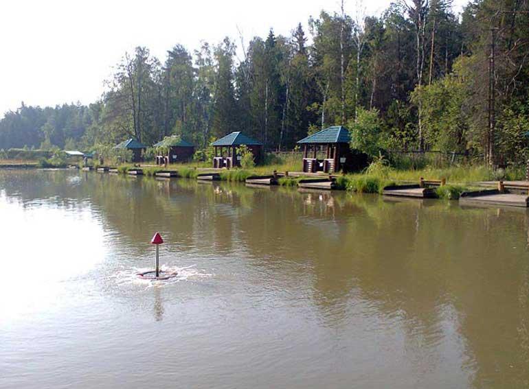 Платная рыбалка щелковский район