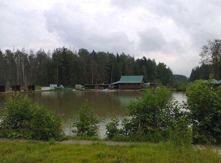fishpark-nik-2