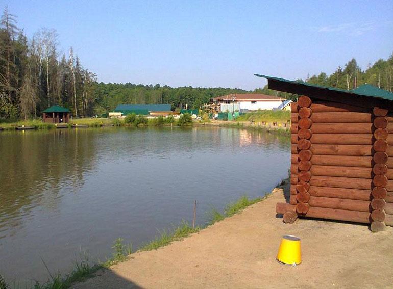 fishpark-nik-4