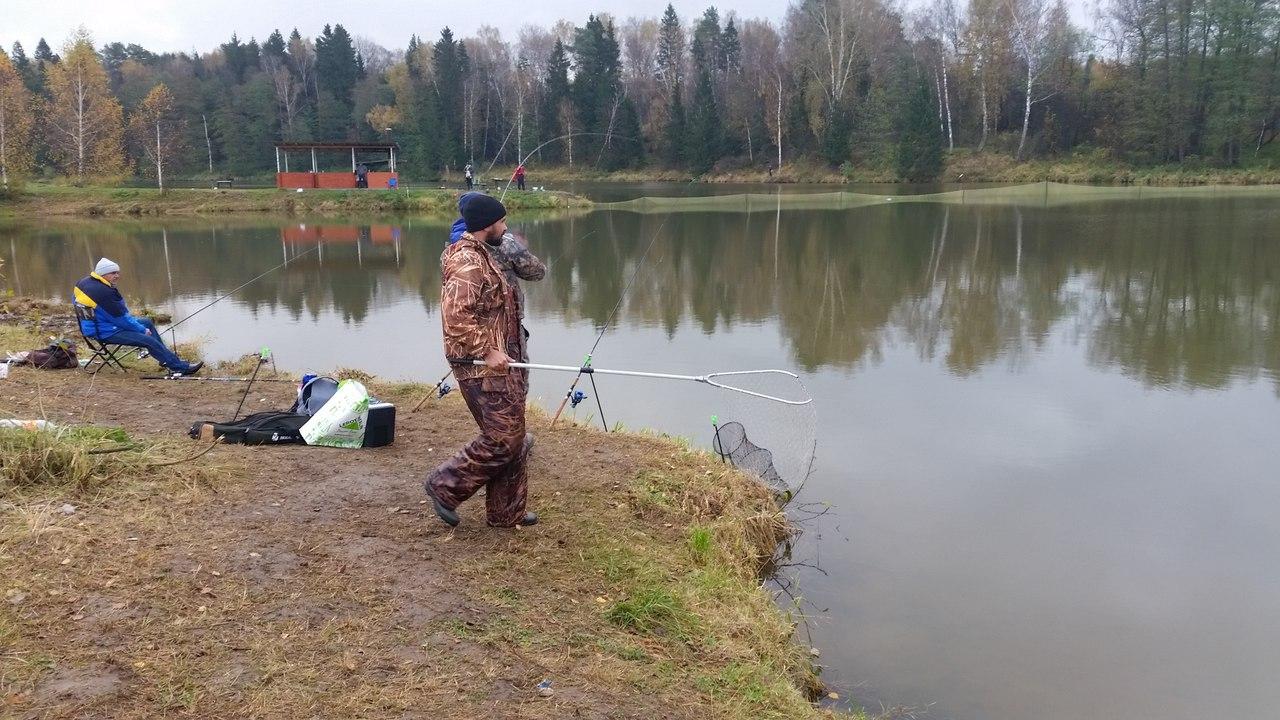 Рыбалка Карпов пруд в Арнеево