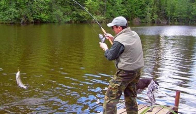 Рыбалка Под аистом