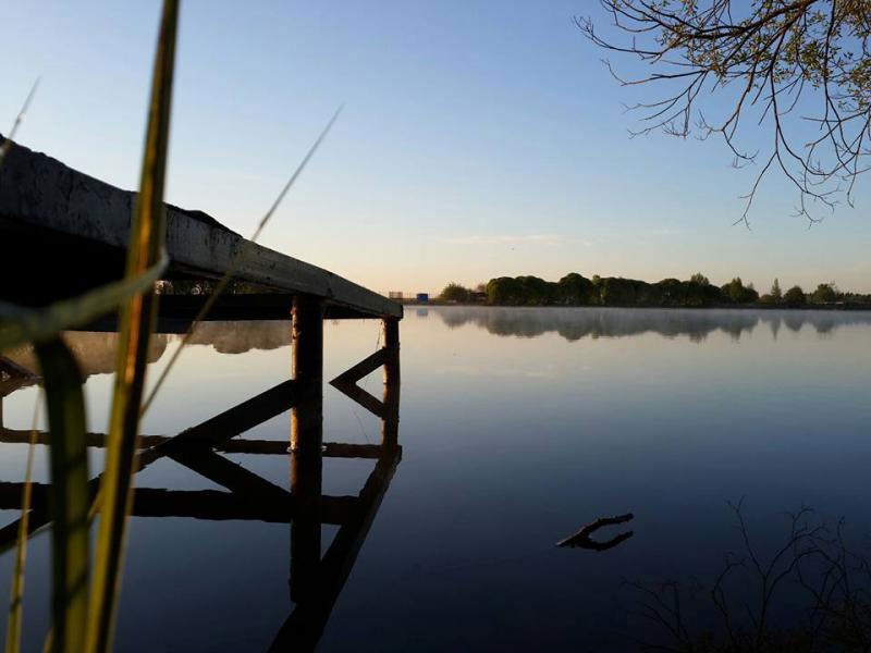 Рыбный пруд возле Лобни