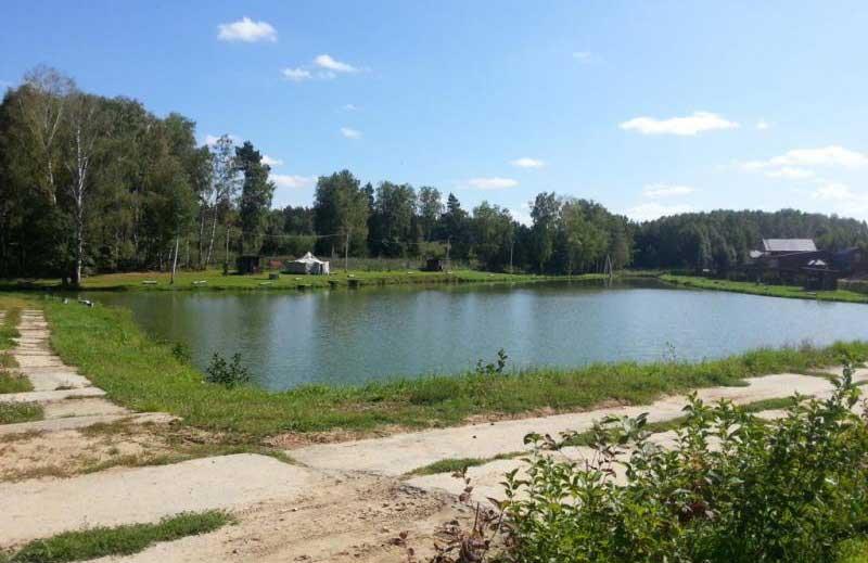 Платный пруд рядом с Гришенки