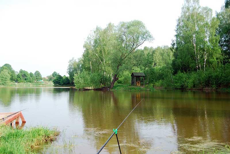 Рыбалка в Репниково
