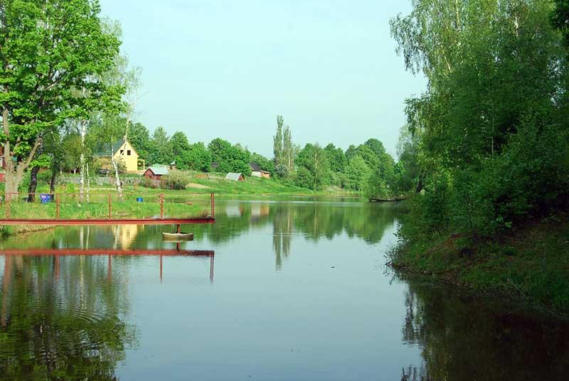 Платный пруд в Репниково