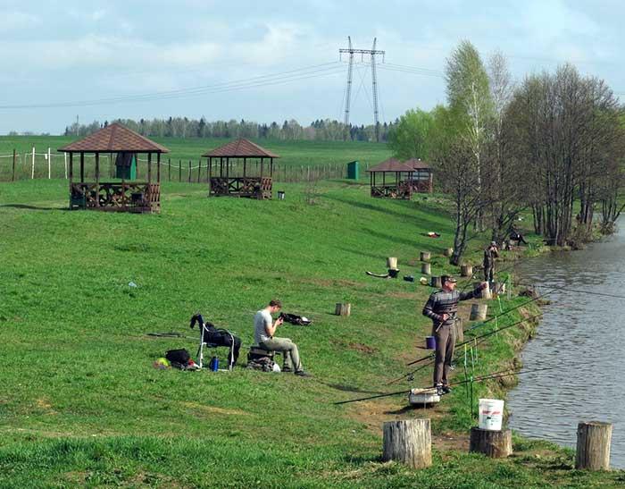 платный пруд n-fisher в Новоселках