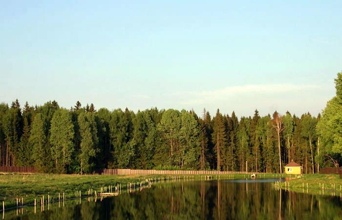 Платный пруд Юрково в Юрлово