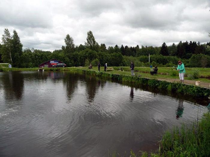 рыбалка Фишка в д. Петряихе