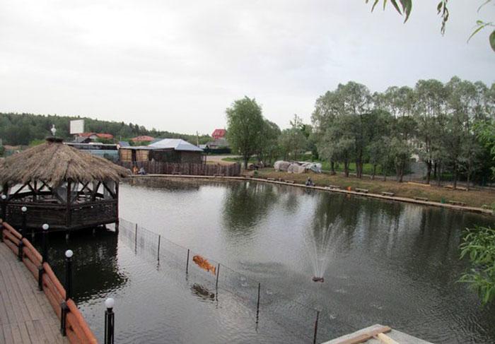 Рыбалка Соколиное гнездо
