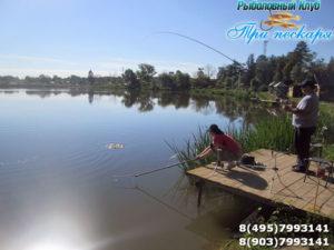 Рыбалка в Лыткино Три Пескаря