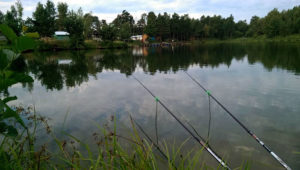 Рыбалка в Минино