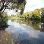 платная рыбалка Тарасовка