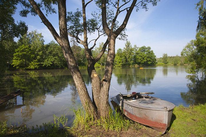 Платный пруд Софрино