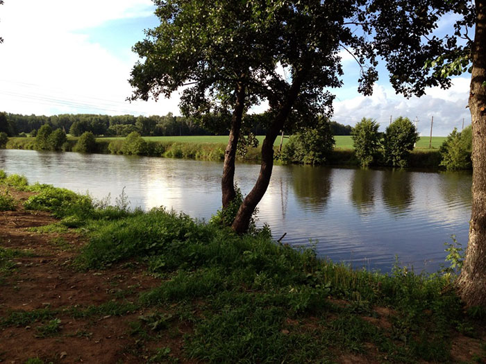 Рыболовное хозяйство Тихая заводь в Щеглятьево