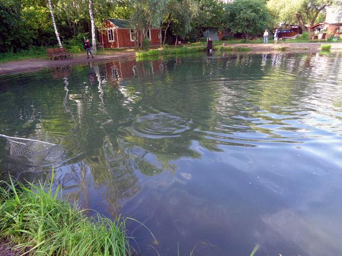Рыбалка в Тимирязевской академии
