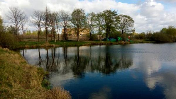 Квадрат пирогово платная рыбалка - Про рыбалку