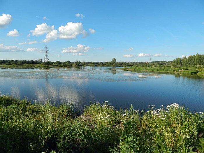 Платная рыбалка в Дмитровском районе Подмосковья, бесплатные ...