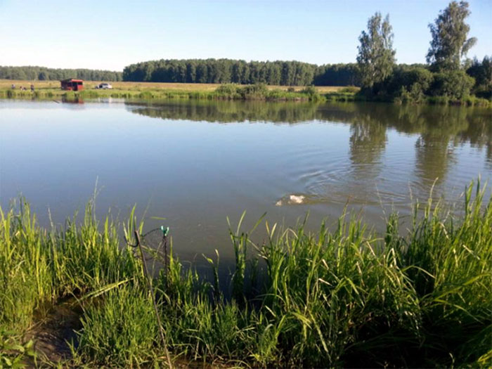 Рыбалка в Мерлеево