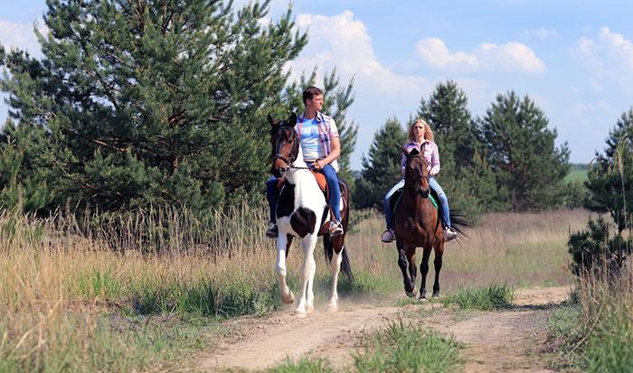 Долина ИВолга лошади