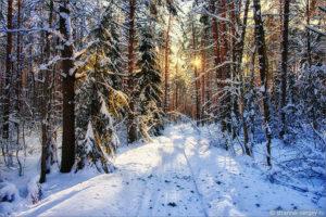 Подмосковный комплекс «Ватутинки» приглашает на зимние выходные!