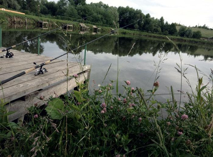 Рыболовный клуб «Кузьмищевский карп»